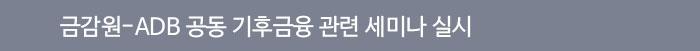 금감원-ADB 공동 기후금융 관련 세미나 실시